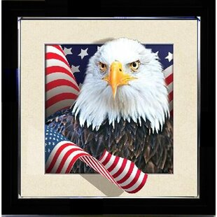 6d6247262b7e  American Eagle  Framed Graphic Art Print