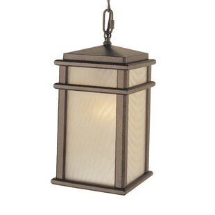 Inexpensive Olympia 1-Light Outdoor Hanging Lantern By Brayden Studio
