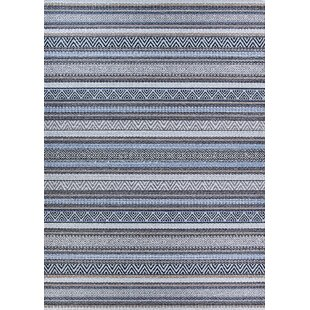 Amasa Light Blue Indoor/Outdoor Area Rug