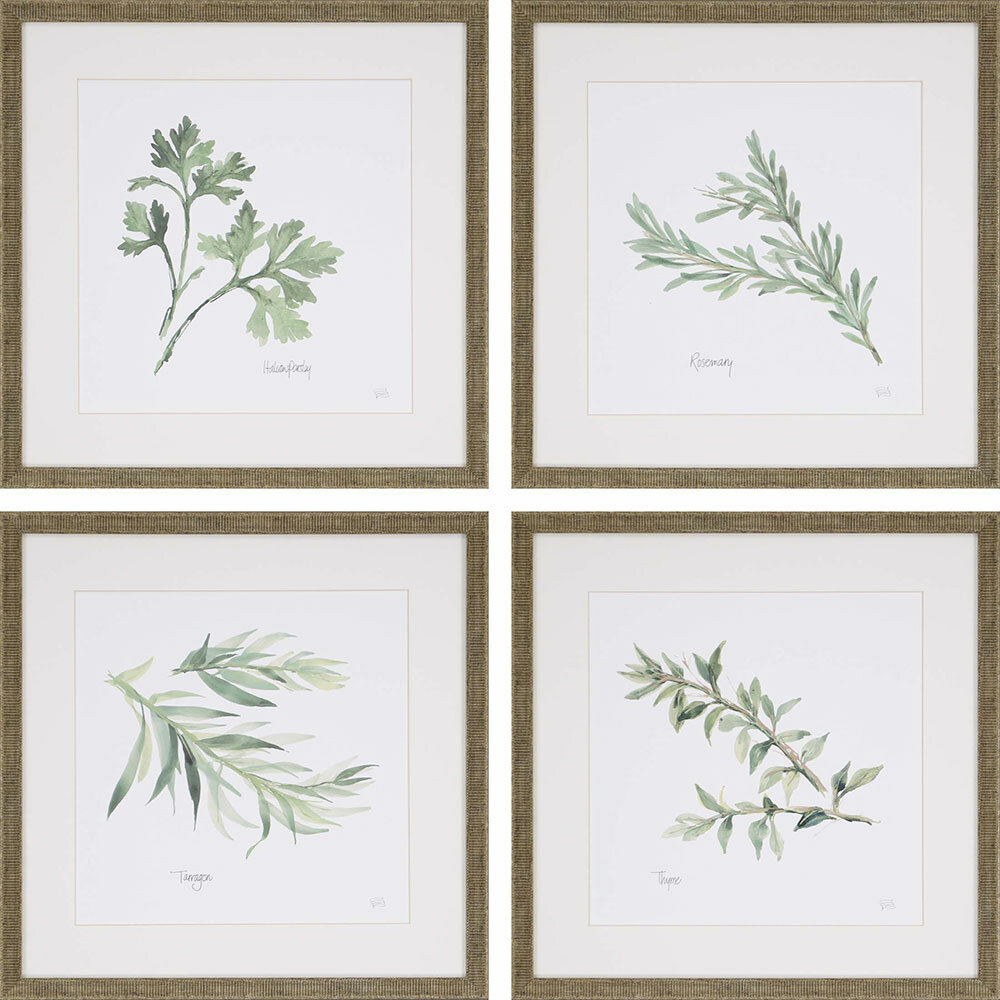 Herbs By Paschke 4 Piece Picture Frame Graphic Art Print Set On Paper Reviews Joss Main