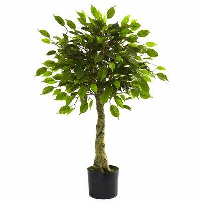 Alcott Hill Faux Ficus Tree