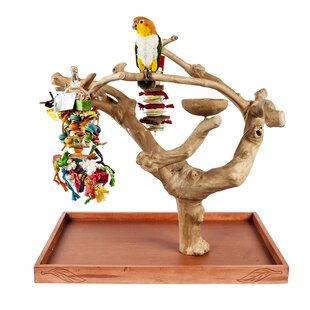 Java Mini Tree Stand by Adventure Bound