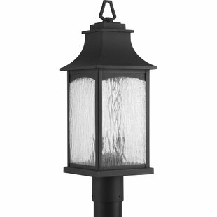 Affordable Price De Witt 2-Light Lantern Head By Darby Home Co