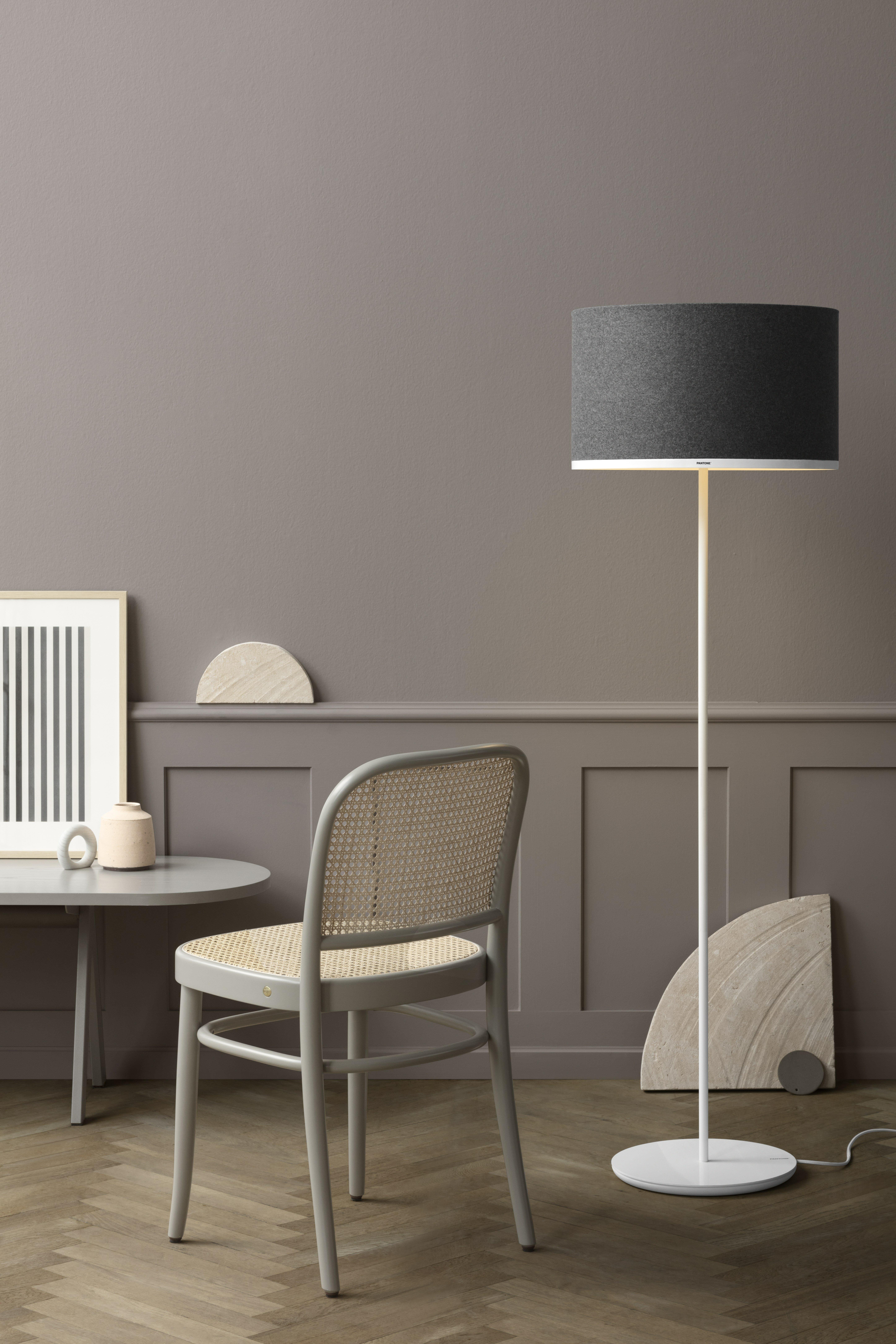 Pantone antares 516 standard floor lamp wayfair mozeypictures Images