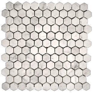 Carrara Marble Hexagon Tile Wayfair - 10 inch hexagon tile
