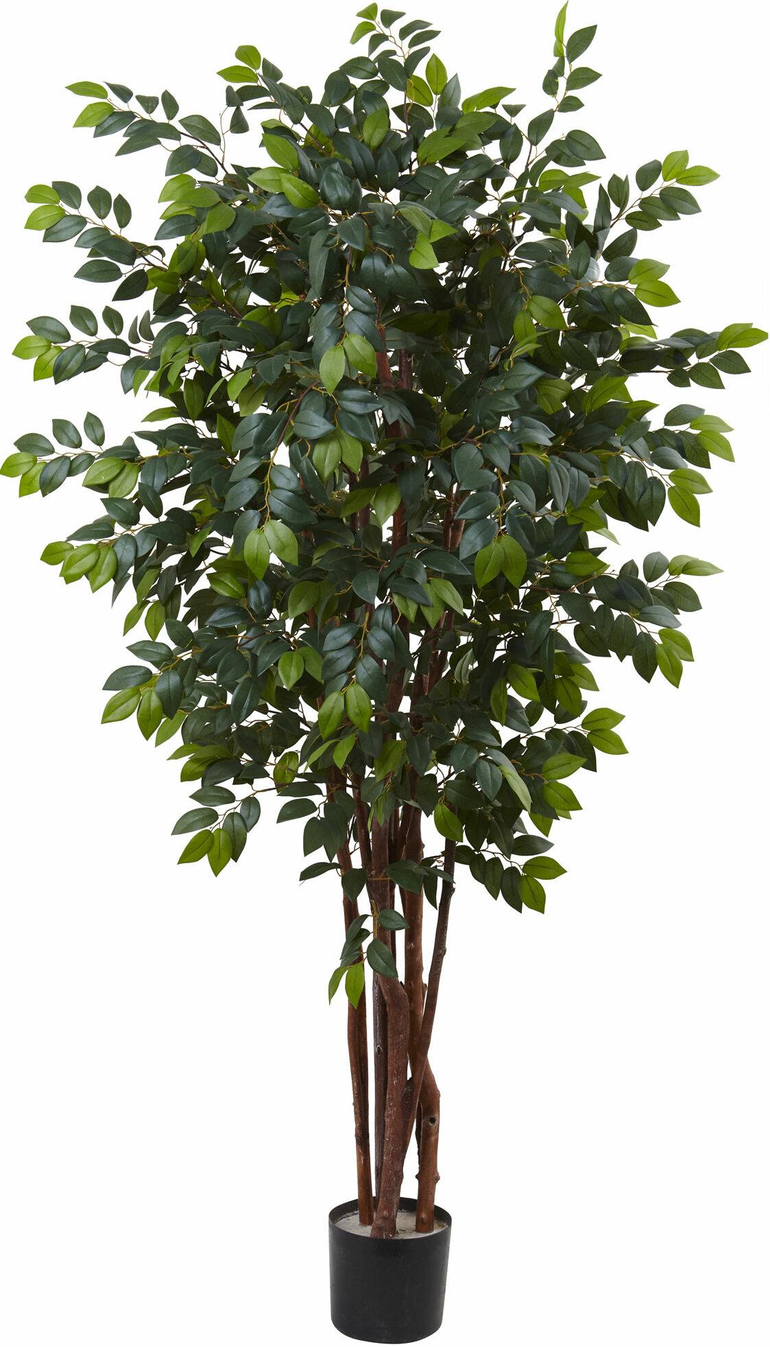 84 Artificial Ficus Tree In Pot Reviews Allmodern