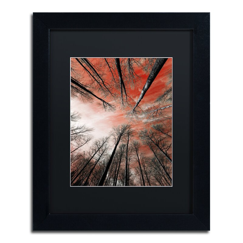 Trademark Art Unsteady By Philippe Sainte Laudy Framed Photographic Print Wayfair