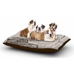 Sylvia Cook 'Crumbling Wall' Dog Pillow with Fleece Cozy Top