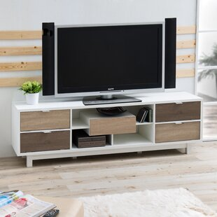 Affordable Price Avada TV Stand for TVs up to 70 by Hokku Designs Reviews (2019) & Buyer's Guide