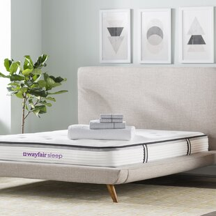 Wayfair Sleep 9