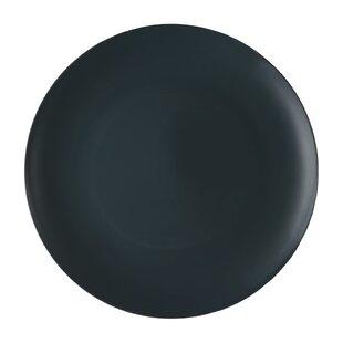 Plastic Dinner Plate (Set of 20)