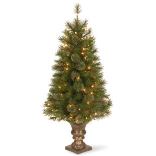 atlanta spruce 4 green artificial entrance christmas tree with 100 clear lights - Outdoor Prelit Christmas Tree