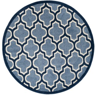 Maritza Light Blue/Navy/White Indoor/Outdoor Area Rug by Willa Arlo Interiors