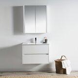 Oquendo 30 Wall-Mounted Single Bathroom Vanity Set with Mirror by Orren Ellis