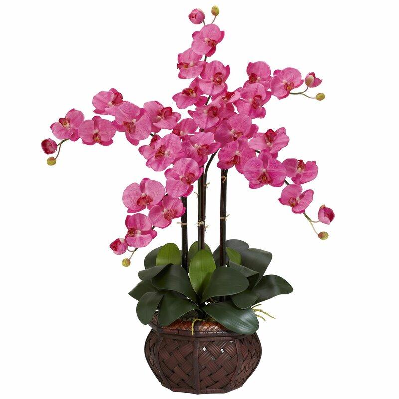 Nearly natural phalaenopsis with decorative vase silk flower phalaenopsis with decorative vase silk flower arrangement in dark pink mightylinksfo