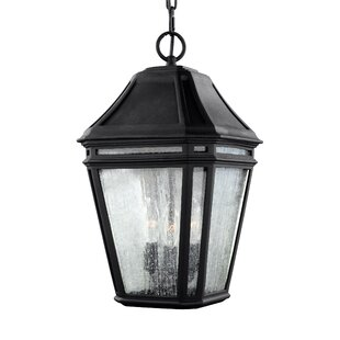 Maxine 3-Light Outdoor Hanging Lantern