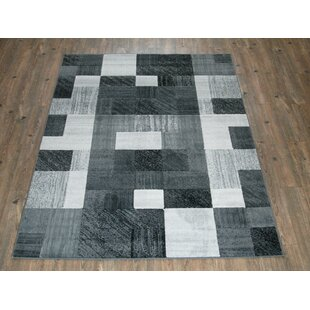 Affordable Dusty Checkered Gray Area Rug ByEbern Designs