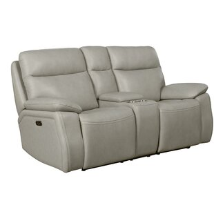 Jimmy Leather Reclining Loveseat by Red Barrel Studio