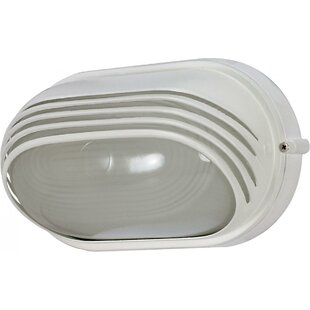 Best Reviews Ayesha 1-Light Outdoor Flush mount By Williston Forge