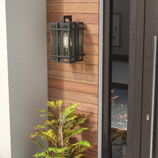 Cipolla 1-Light Outdoor Sconce