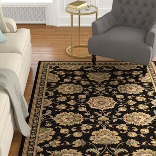 Clarence Black/Gold/Beige Area Rug by Astoria Grand