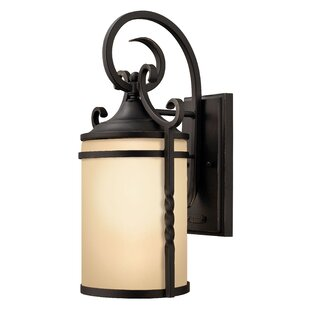 Carlyle 1-Light Outdoor Wall Lantern By Fleur De Lis Living Outdoor Lighting