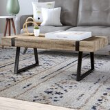 Winnie Sled Coffee Table by Zipcode Design™