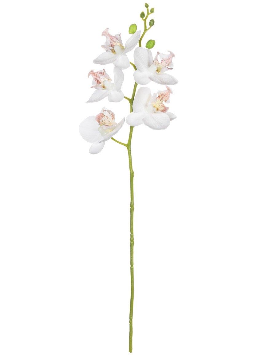 House Of Hampton Mini Orchid Flower Branch Wayfair