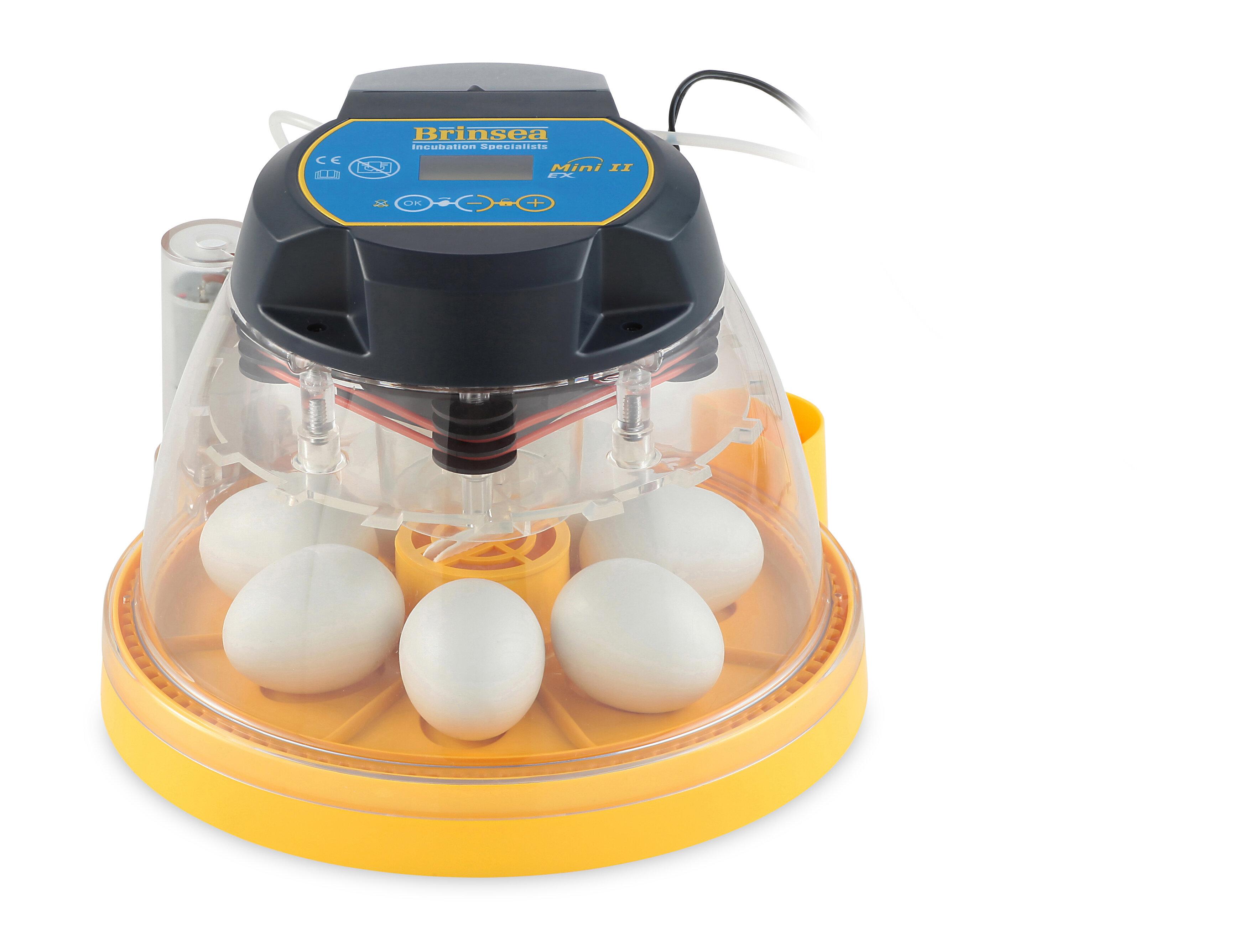 brinsea mini ii ex automatic egg incubator wayfair rh wayfair com