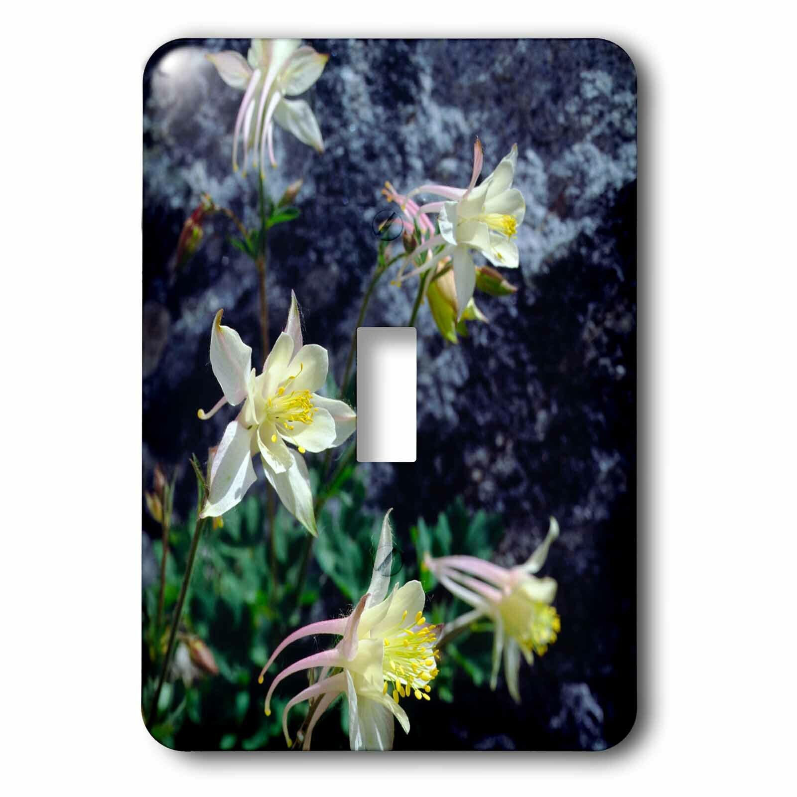 3drose Columbine Wildflowers 1 Gang Toggle Light Switch Wall Plate Wayfair