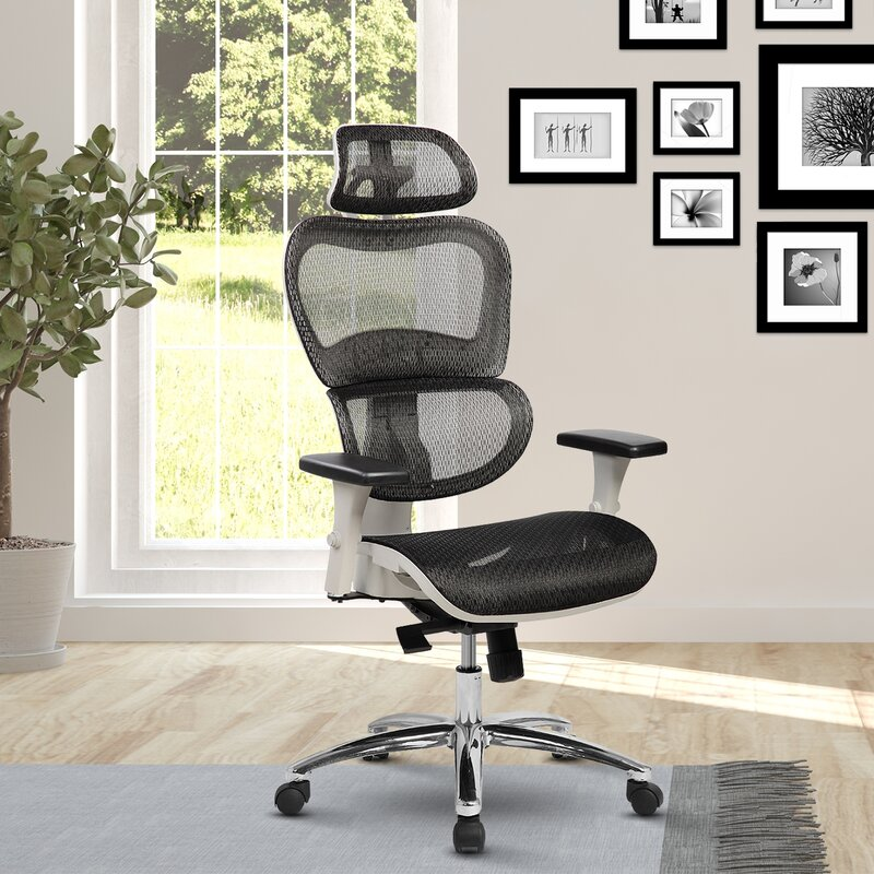 Eure Deluxe Mesh High-Back Desk Chair with Neck Support & Latitude Run Eure Deluxe Mesh High-Back Desk Chair with Neck Support ...