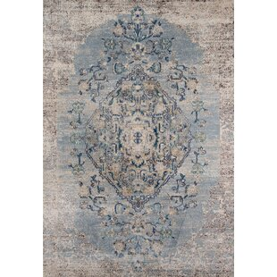 Damien Light Blue/Gray Area Rug by Mistana