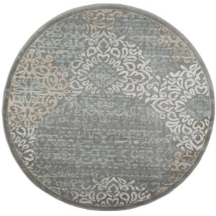 Ackermanville Gray Area Rug by Charlton Home