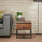 Finis End Table with Storage by 17 Stories