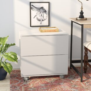 Duave 2 Drawer Lateral Filing Cabinet by Winston Porter Best #1