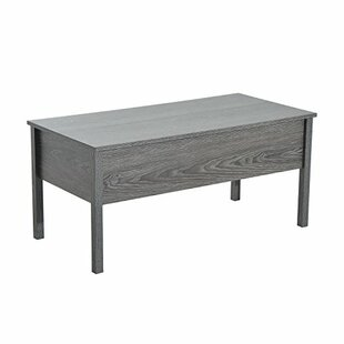 Flanagan Modern Lift Top Coffee Table with Storage