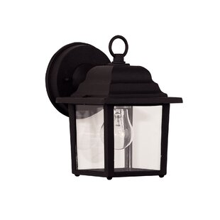 Vantassel 1-Light Outdoor Wall Lantern