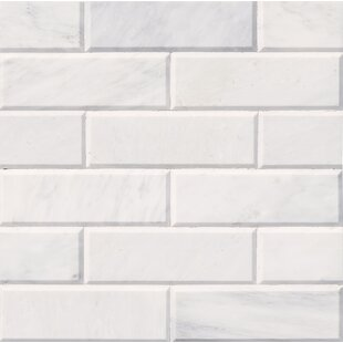 Pol And Bev 4 X 12 Marble Subway Tile In White