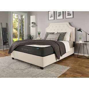 Devitt Upholstered Platform Bed with Mattress