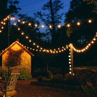 Save & Edison String Lights | Wayfair