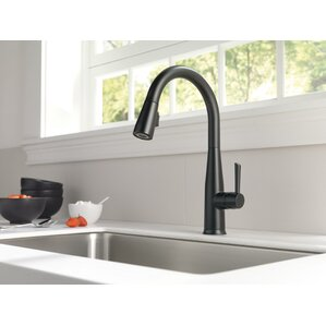 essa single handle pull down standard kitchen faucet with touch2o
