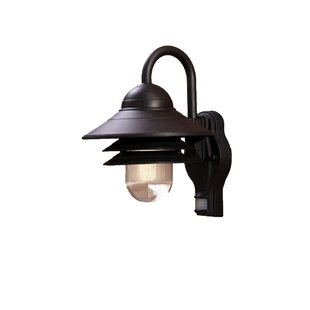 Great Price Caja 1-Light Outdoor Barn Light Sconce By Breakwater Bay