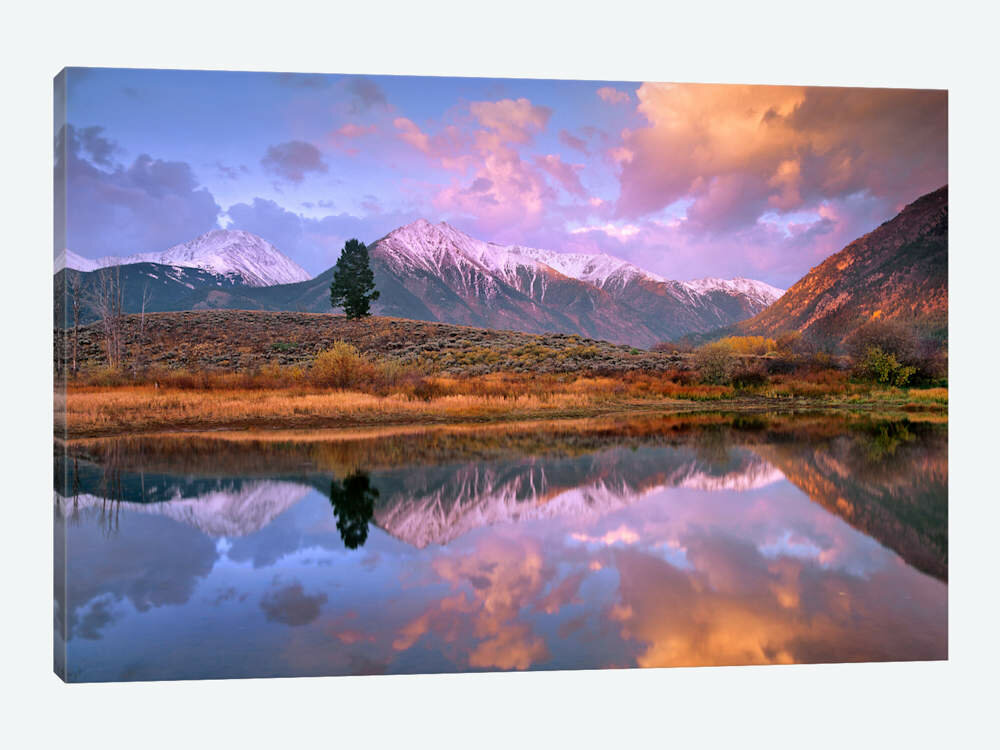 East Urban Home La Plata And Twin Peaks In The Sawatch Range Reflected In Twin Lakes With A Lone Tree Colorado Photographic Print On Canvas Wayfair