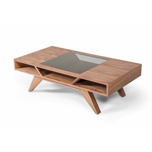 Eckhoff Coffee Table with Storage