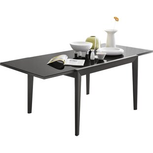 Iain Extendable Dining Table by Ebern Designs Reviews