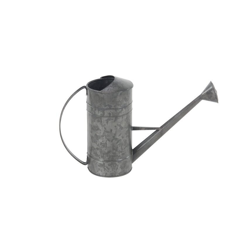 Arsenovic Distressed Iron Watering Can