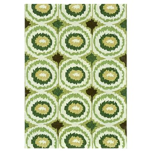 Mosher Hand-Hooked Green Indoor/Outdoor Area Rug