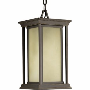 Zahn 1-Light Outdoor Hanging Lantern