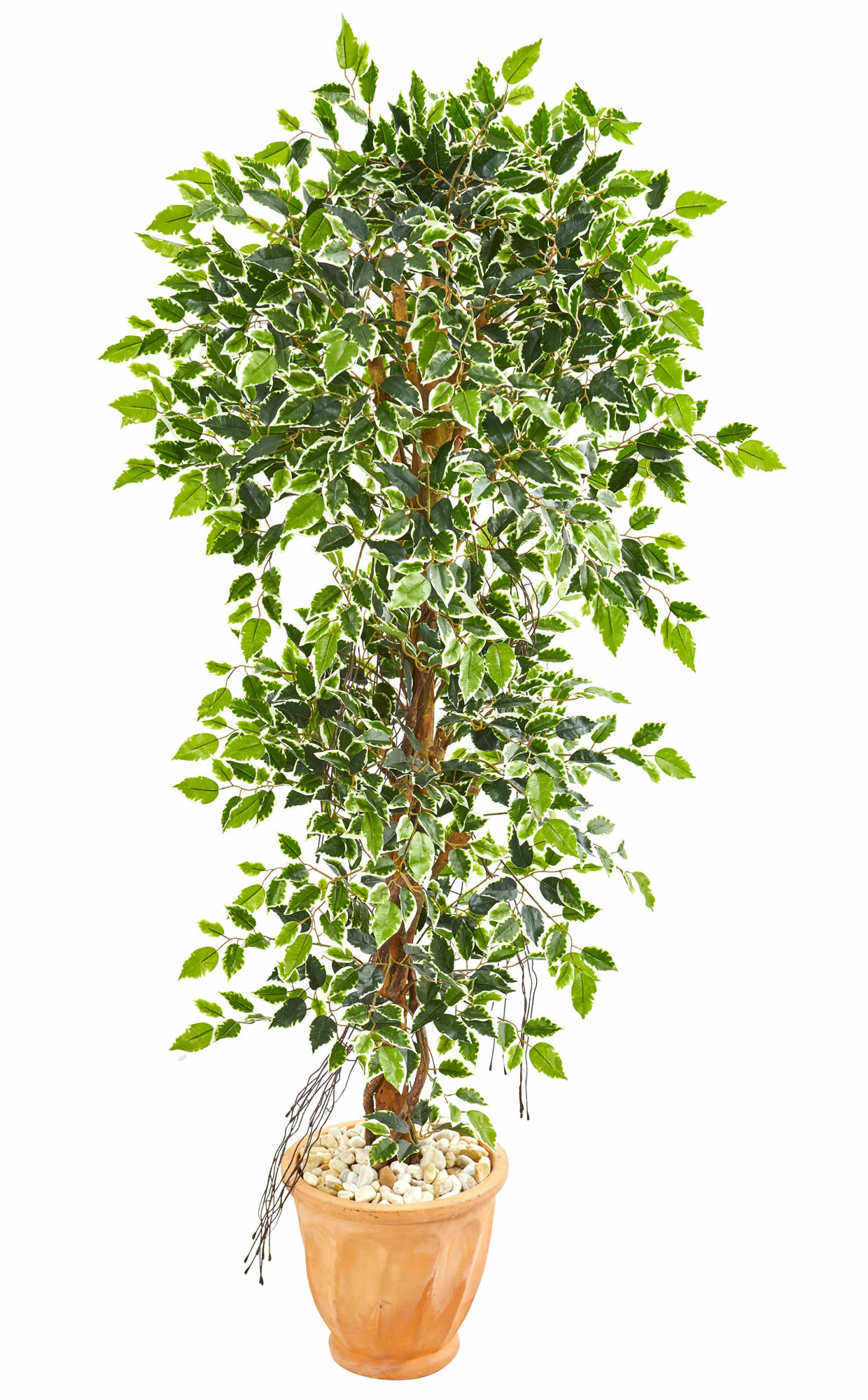 Charlton Home 64 Artificial Ficus Tree In Planter Wayfair