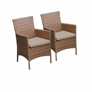 Medina Patio Dining Chair With Cushion (Set Of 2) by Rosecliff Heights Read Reviews